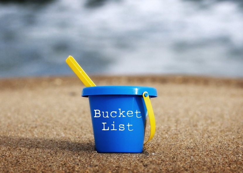 Bilde fra http://www.njscpa.org/career/article/2013/08/09/summer-bucket-list
